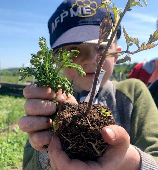 Little Seeds Nature Preschool