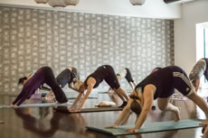 Class Spotlight Yoga Flow Ymca Of The North